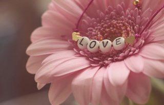 amore.