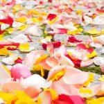 Come essere felici? 1 idea di felicità e benessere dagli antichi filosofi