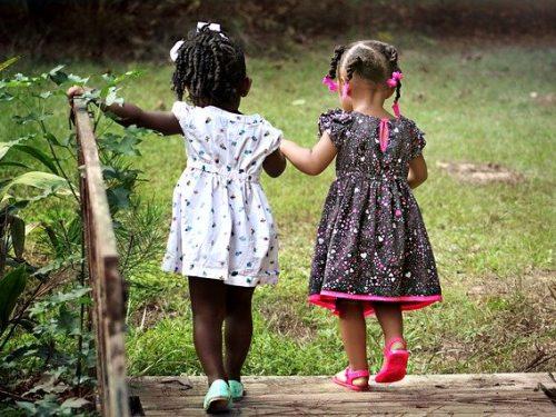 Il legame di amicizia: sviluppo