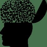 Come viene compreso il linguaggio dagli esseri umani? Una teoria molto accreditata