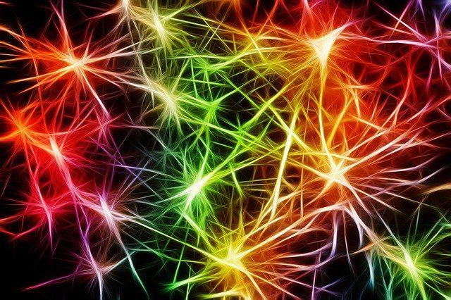 La schizofrenia e le cause scatenanti: il venir meno dell'integrazione tra emozione, pensiero e azione