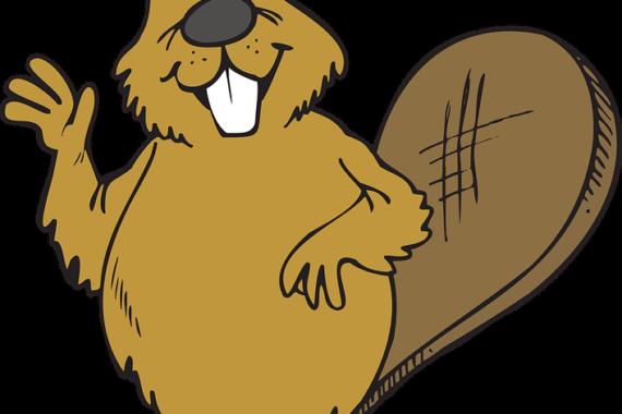 La Filastrocca del bimbo castoro