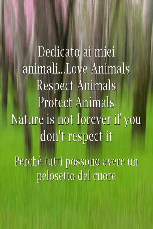 animali e rispetto
