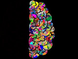 neuropsicologia.