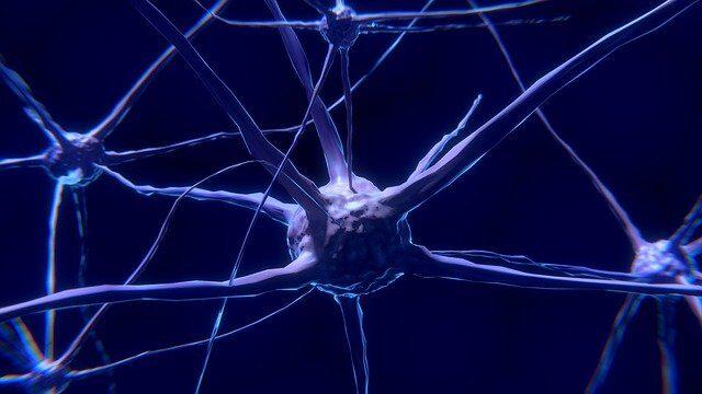 Di cosa si occupa la neuropsicologia