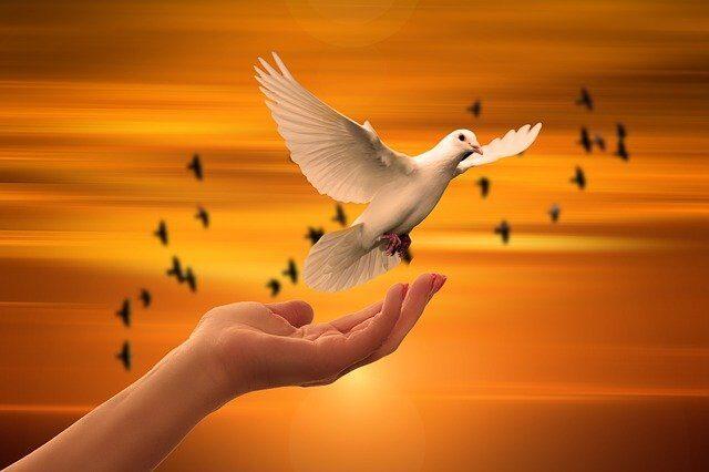 5 regole per ritrovare la propria pace interiore